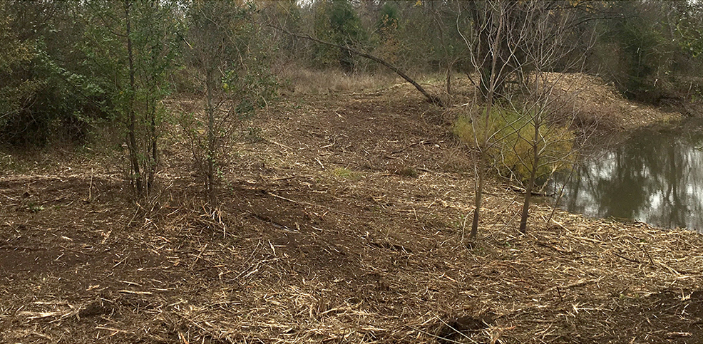 Land Clearing Contractor for Farm and Ranch | Athens, Texas