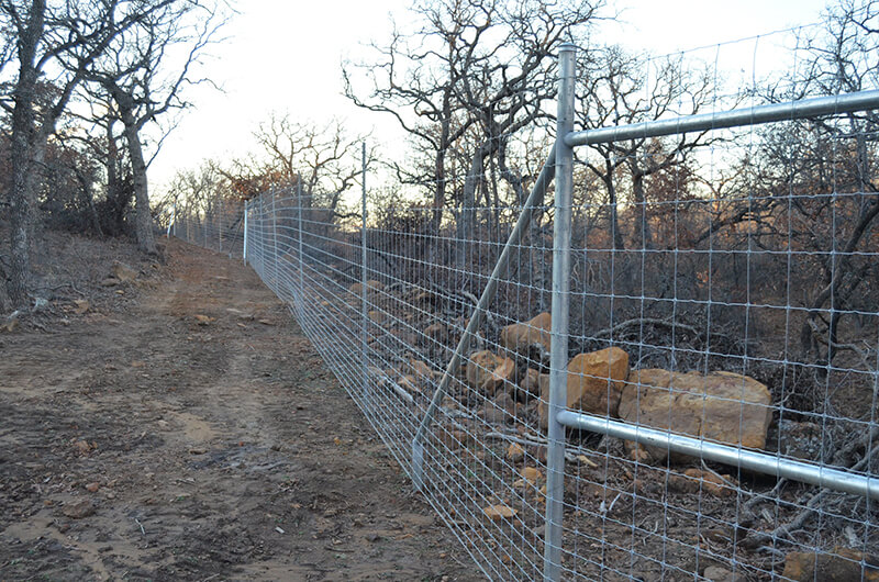 High Deer Fence