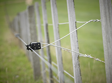 Offset Electric Fences