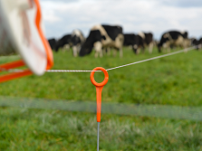 Portable Electric Fences