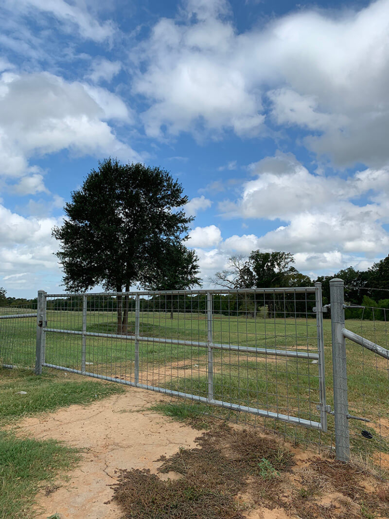 Cattle Fence Gate