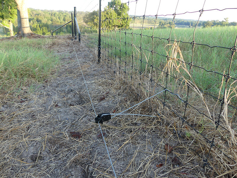 Cattle Fence Electric Wire