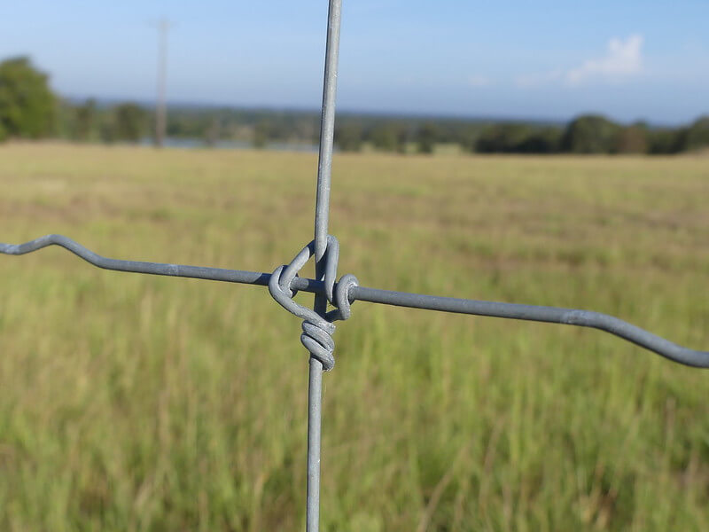 Cattle Fence Fixed Knot